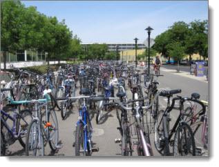 bikes_in_Davis